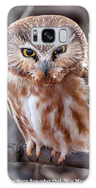 Saw-whet Owl Galaxy Case