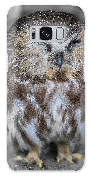 Saw Whet Owl Galaxy Case