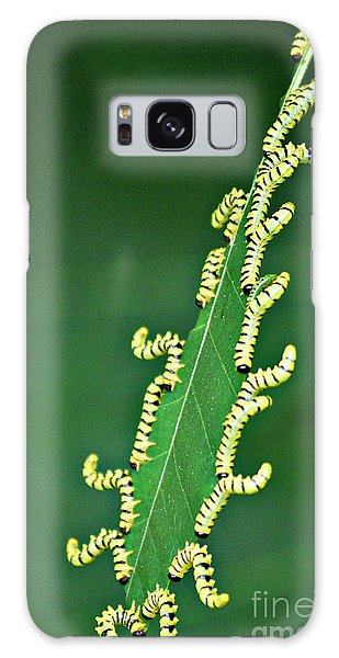 Sawflies Galaxy Case