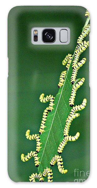 Sawflies Galaxy Case