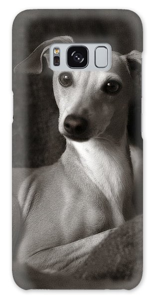 Say What Italian Greyhound Galaxy Case