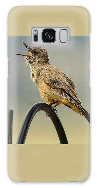 Say's Phoebe Singing Galaxy Case