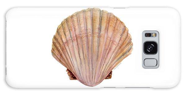 Scallop Shell Galaxy Case