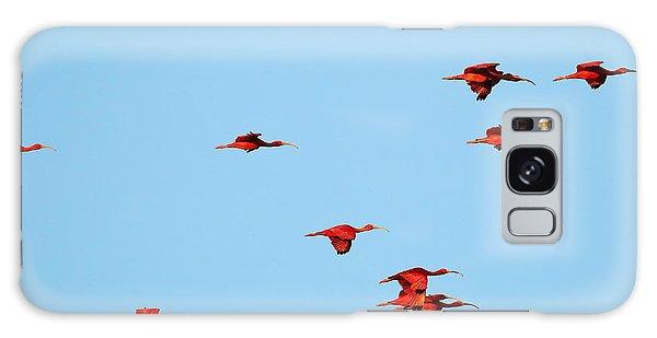 Scarlet Ibis At Caroni Swamp Galaxy Case