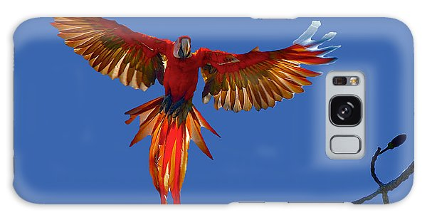 Scarlet Macaw On The Osa Peninsula Galaxy Case