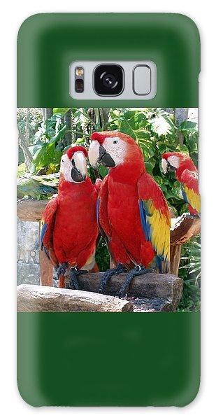 Scarlet Macaws Galaxy Case