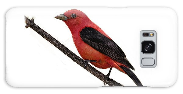 Scarlet Tanager On Branch Galaxy Case