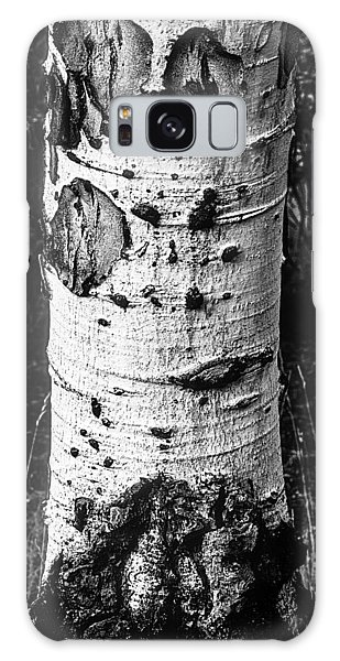 Scarred Old Aspen Tree Trunk In Colorado Forest Galaxy Case