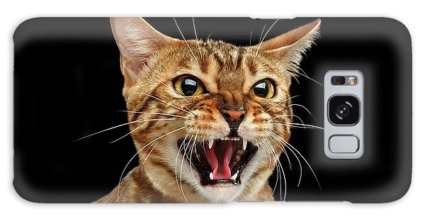 Scary Hissing Bengal Cat On Black Background Galaxy Case