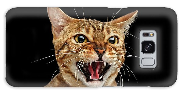 Cats Galaxy Case - Scary Hissing Bengal Cat On Black Background by Sergey Taran