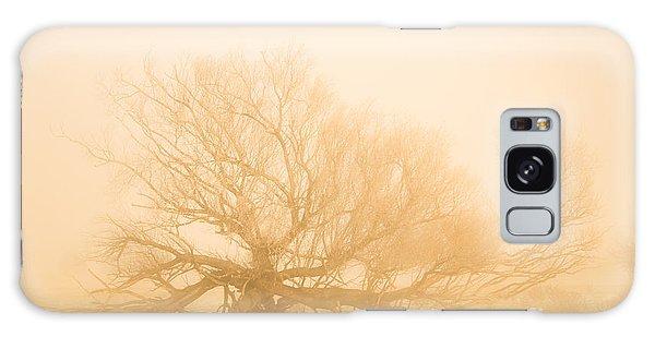 Halloween Galaxy Case - Scary Tree Scenes by Jorgo Photography - Wall Art Gallery