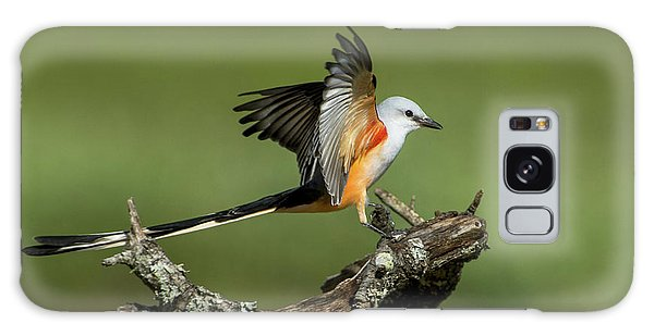 Scissor-tailed Flycatcher Galaxy Case
