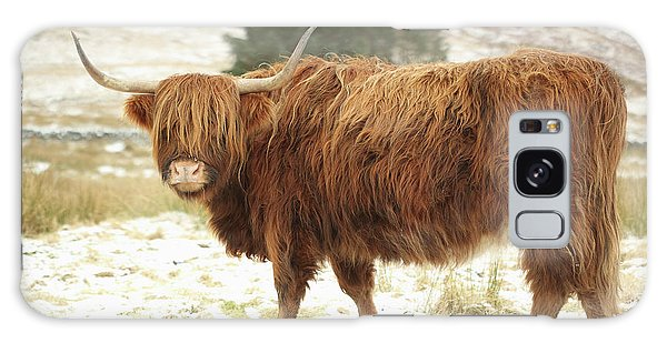Scottish Red Highland Cow In Winter Galaxy Case
