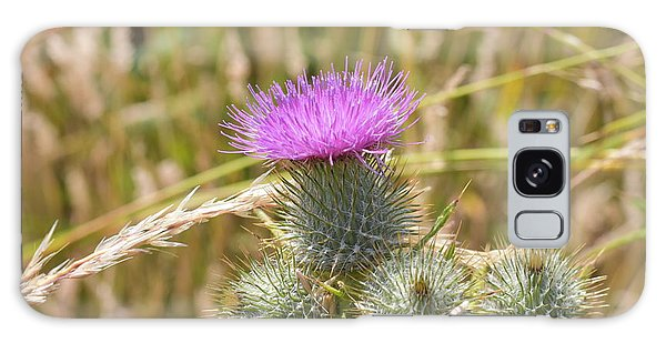 Scottish Thistle Galaxy Case