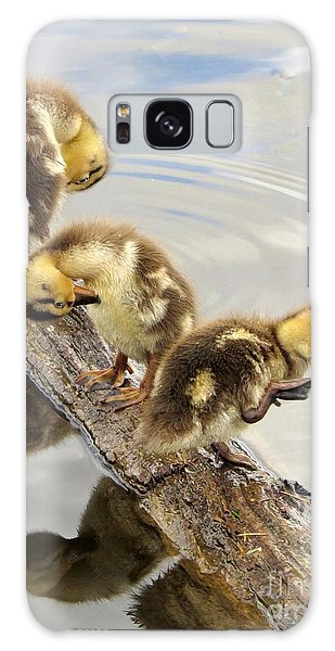 Preening Frenzy Galaxy Case
