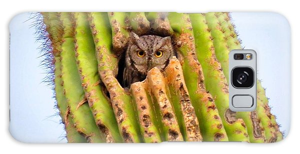 Screech Owl In Saguaro Galaxy Case