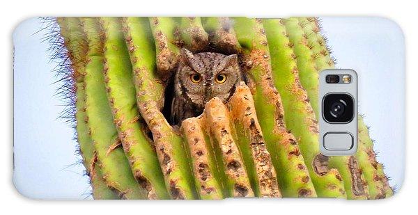 Screech Owl In Saguaro Galaxy Case