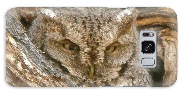 Screech Owl On Spring Creek Galaxy Case