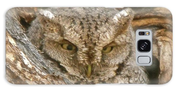 Screech Owl On Spring Creek Galaxy Case