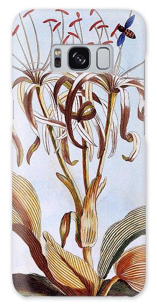Sea Lily Galaxy Case - Sea Daffodil by Pierre-Joseph Buchoz