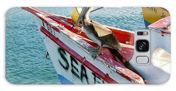 Sea Fly 1, Aruba Galaxy Case