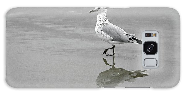 Sea Gull Walking In Surf Galaxy Case