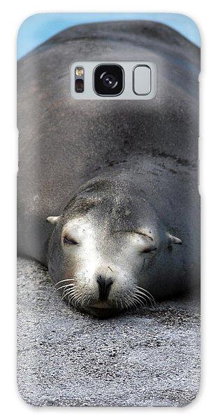 Sea Lion Snooze Galaxy Case