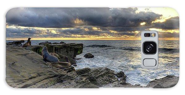 Sea Lions At Sunset Galaxy Case by Eddie Yerkish