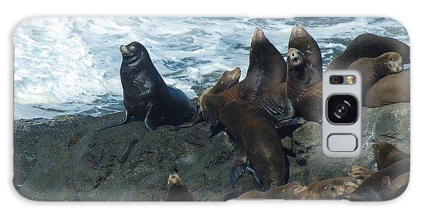 Sea Lions Galaxy Case