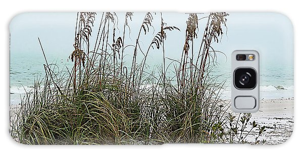 Sea Oats In Light Fog Galaxy Case