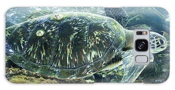 Sea Of Cortez Green Turtle Galaxy Case