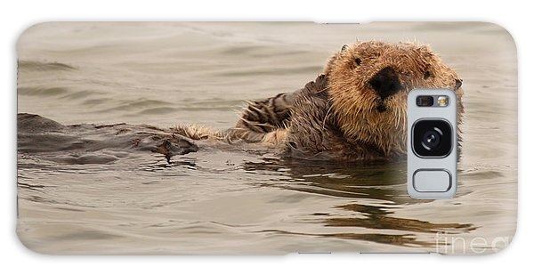 Sea Otter All Cuddled Up Galaxy Case by Max Allen