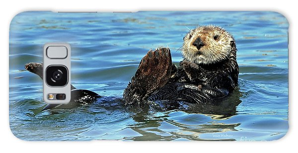 Sea Otter Primping Galaxy Case