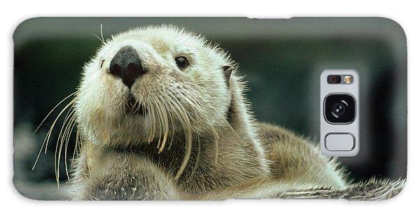 Sea Otter  Galaxy Case by Tim Fitzharris
