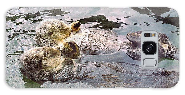 Otter Galaxy S8 Case - Sea Otters Holding Hands by BuffaloWorks Photography