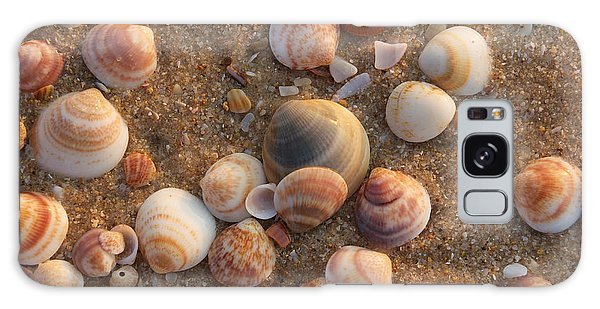 Sea Shells At Sunset Galaxy Case