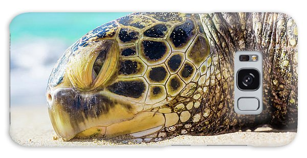 Sea Turtle Resting At The Beach Galaxy Case