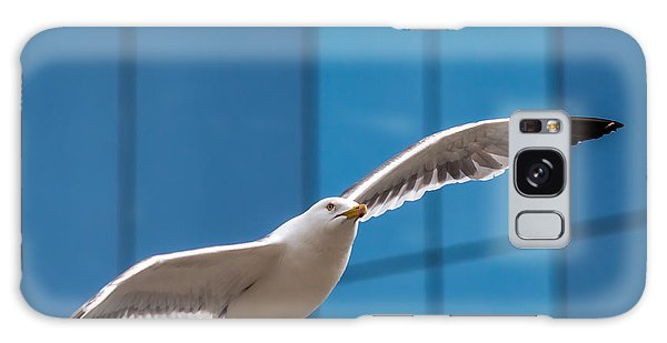 Seabird Flying On The Glass Building Background Galaxy Case