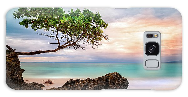 Seagrape Tree Galaxy Case