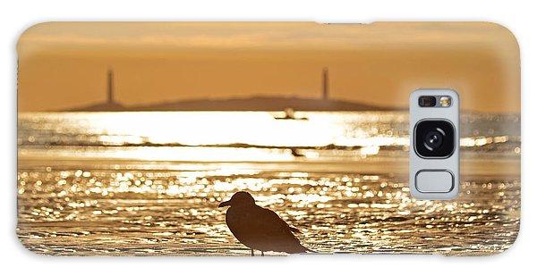 Seagull Admiring Thacher Island Gloucester Ma Good Harbor Beach Galaxy Case