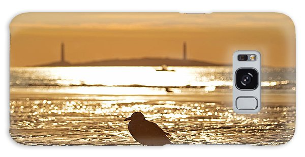 Seagull Admiring Thacher Island Gloucester Ma Good Harbor Beach Galaxy Case