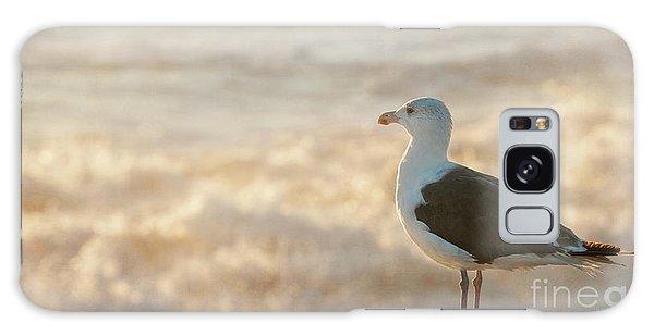 Seagull At Sunrise Galaxy Case