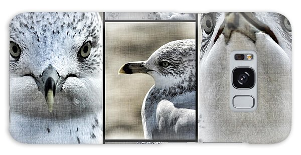 Seagull Collage Galaxy Case
