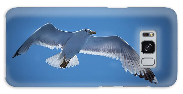 Galaxy Case featuring the photograph Seagull by Davor Zerjav