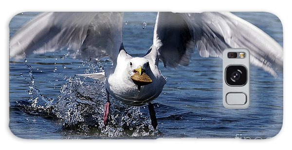 Seagull Flight Galaxy Case