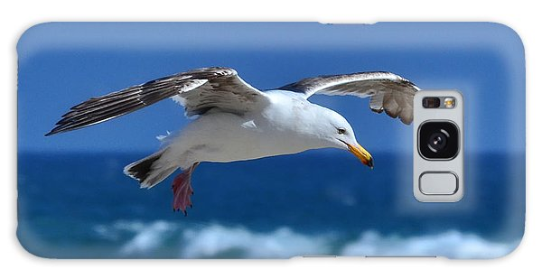 Seagull In Flight Galaxy Case