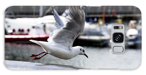 Seagull Galaxy Case