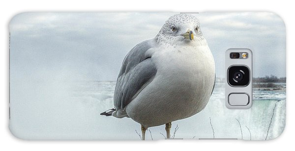 Seagull Model Galaxy Case