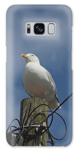 Seagull Perching. Galaxy Case