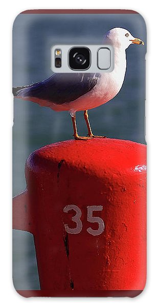 Seagull Number 35 Galaxy Case